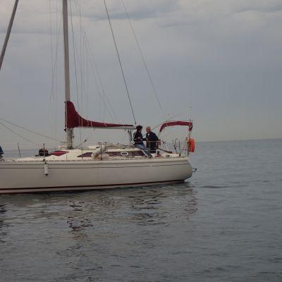 Pêche a bord d'un voilier
